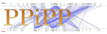 logo_ppipp.png